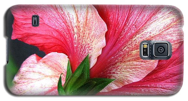Hibiscus #5 Galaxy S5 Case