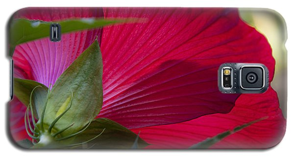 Galaxy S5 Case featuring the photograph Hibiscus by Charles Harden