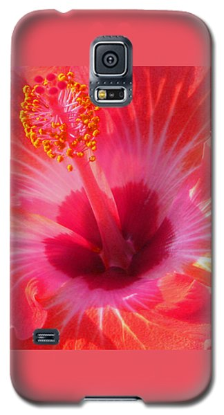 Hibiscus - Coral And Pink Square Galaxy S5 Case by Kerri Ligatich