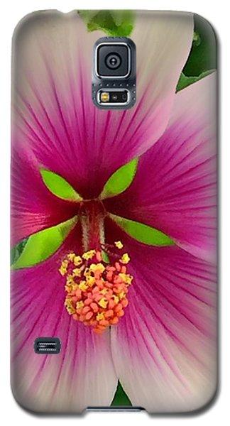 Hibiscus Face Galaxy S5 Case