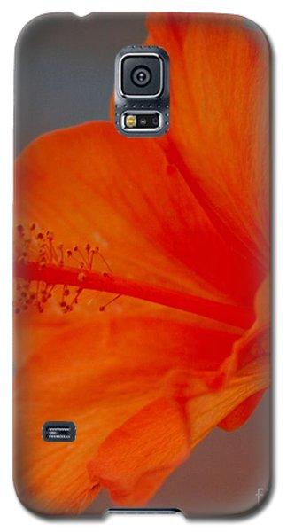 Hot Orange Hibiscus Galaxy S5 Case