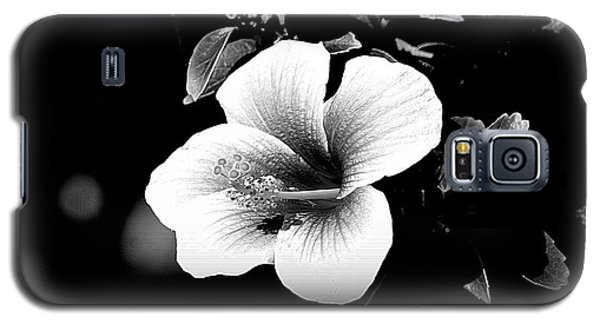 Galaxy S5 Case featuring the photograph Hibiscus In The Dark by Lori Seaman