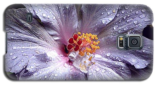 Hibiscus In The Rain Galaxy S5 Case