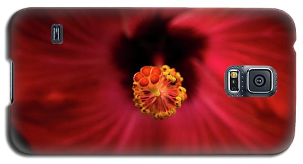 Hibiscus Galaxy S5 Case by Jay Stockhaus