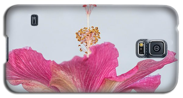 Hibiscus Looking Upward Galaxy S5 Case by Dorothy Cunningham