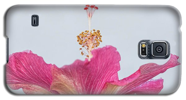 Hibiscus Looking Upward Galaxy S5 Case