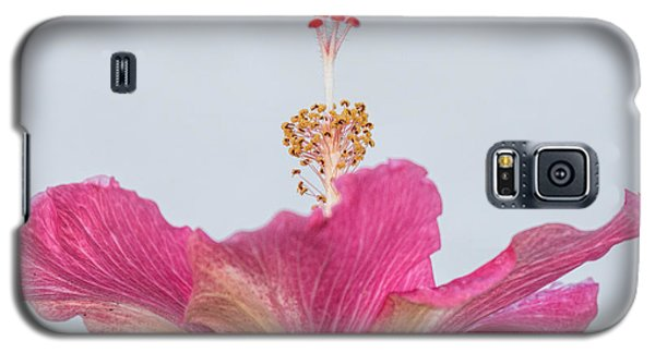 Hibiscus Looking Upward Galaxy S5 Case