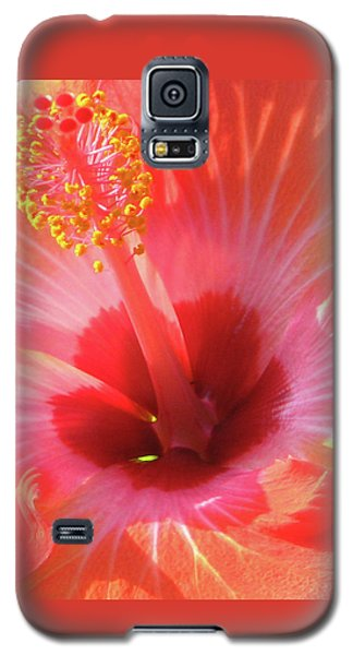 Hibiscus - Shades Of Coral Galaxy S5 Case