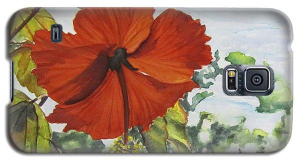 Hibiscus St Thomas Galaxy S5 Case