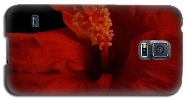 Hibiscus Galaxy S5 Case by Tammy Herrin