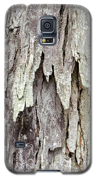 Galaxy S5 Case featuring the photograph Hickory Tree Bark Abstract by Christina Rollo