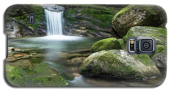 Hidden Beauty Galaxy S5 Case