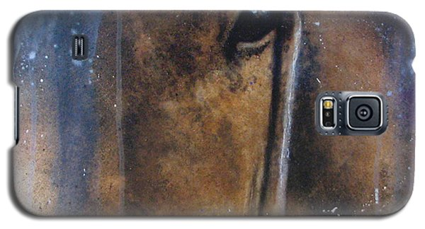 Hidden Horse Galaxy S5 Case