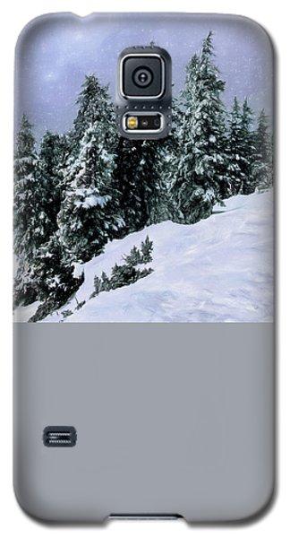 Hidden Peak Galaxy S5 Case by Jim Hill