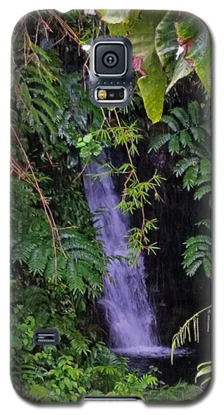 Small Hidden Waterfall  Galaxy S5 Case
