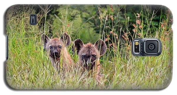 Hide-n-seek Hyenas Galaxy S5 Case