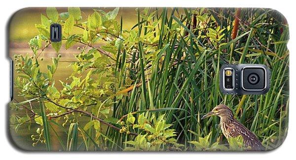 Hiden Galaxy S5 Case