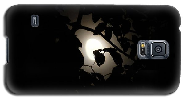 Galaxy S5 Case featuring the photograph Hiding - Leaves Over Moon by Menega Sabidussi
