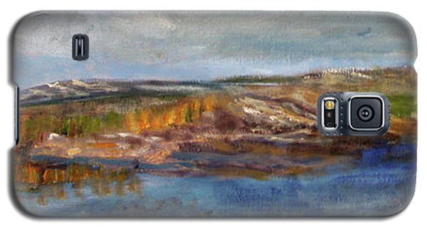 Galaxy S5 Case featuring the painting Tranquility by Michael Helfen