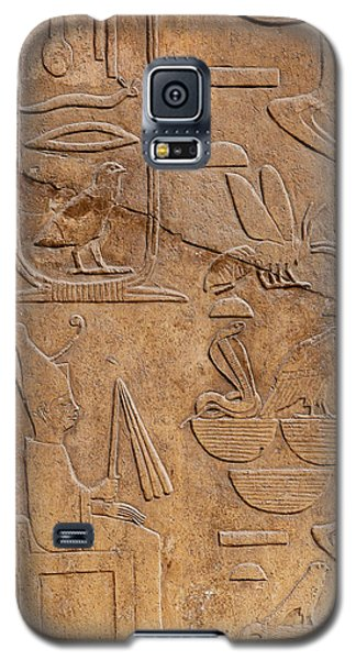 Hieroglyphs On Ancient Carving Galaxy S5 Case by Jane Rix
