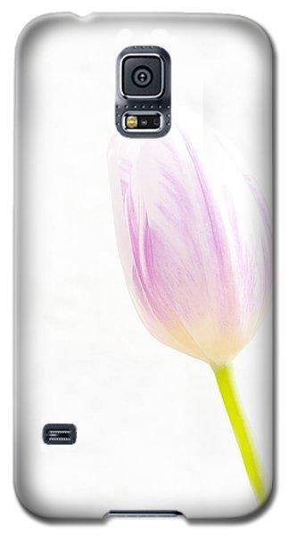High Key Tulip Galaxy S5 Case