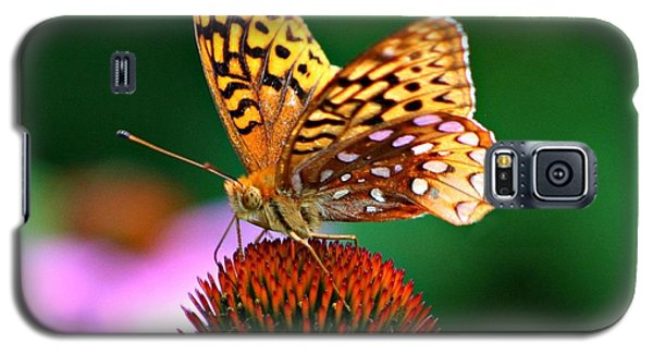 High Performance Galaxy S5 Case by Barbara S Nickerson