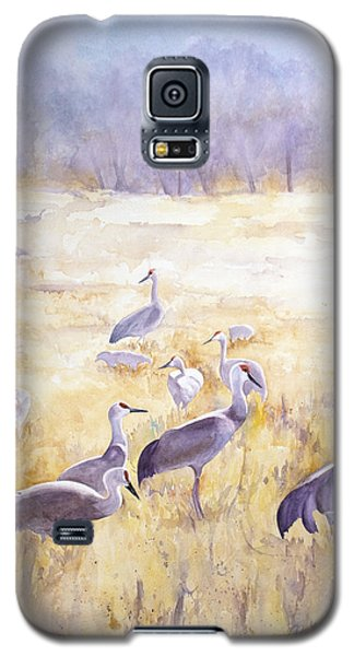 High Plains Drifters Galaxy S5 Case