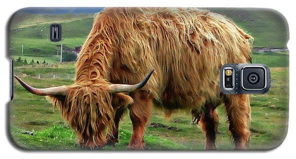Highland Cow Galaxy S5 Case by Anthony Dezenzio