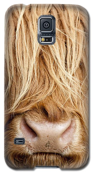 Highland Cow Galaxy S5 Case