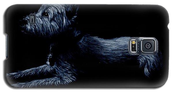 Highland Terrier Galaxy S5 Case
