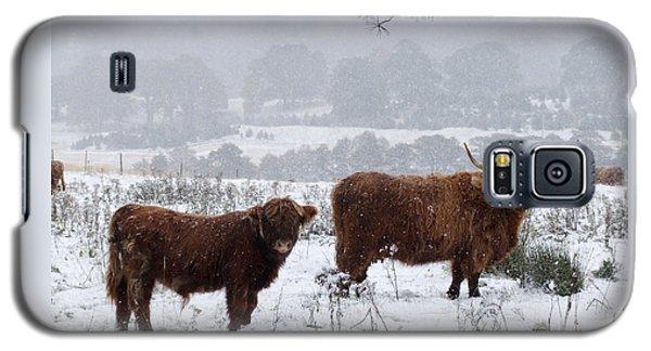 Highlanders In Snow Galaxy S5 Case