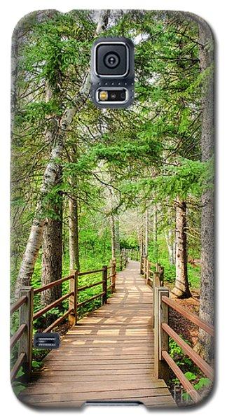 Hiking Trail Galaxy S5 Case