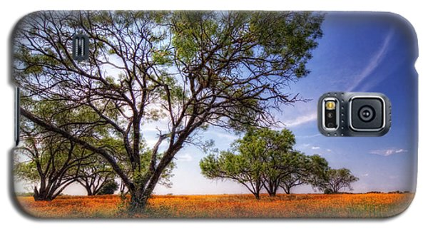 Hill Country Spring Galaxy S5 Case
