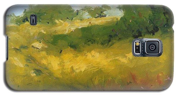 Hill In Richmond Galaxy S5 Case