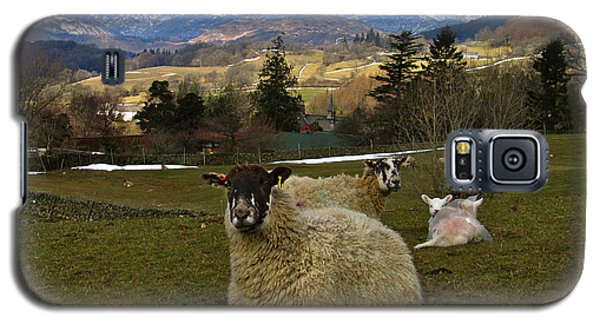 Galaxy S5 Case featuring the photograph Hill Sheep by RKAB Works