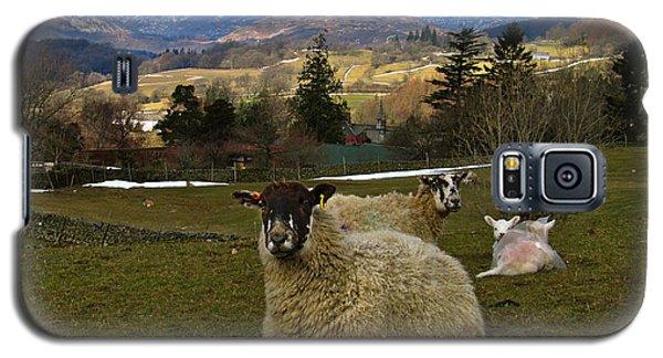 Hill Sheep Galaxy S5 Case