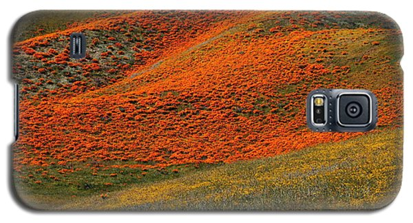 Hills Of Gold And Yellow Near Antelope Valley Poppy Preserve Galaxy S5 Case