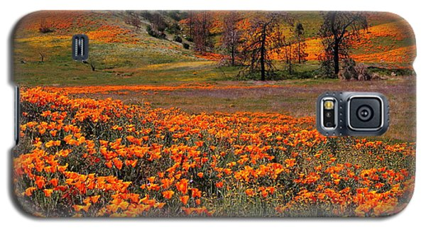 Hills Of Orange Near Antelope Valley Poppy Preserve In California Galaxy S5 Case