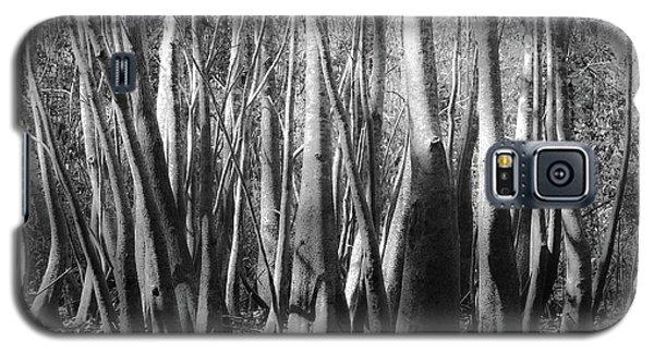 Hillsborough Zen Galaxy S5 Case