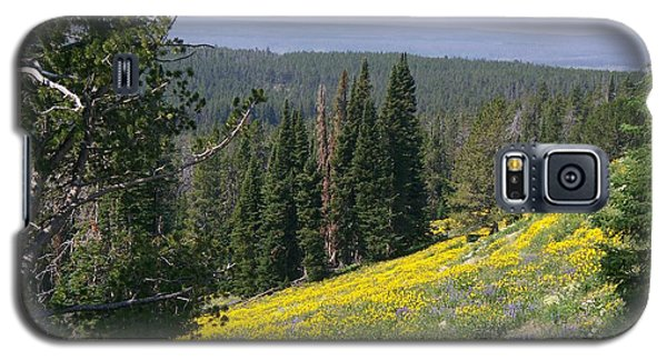 Hillside Wildflowers Galaxy S5 Case