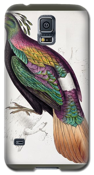 Himalayan Monal Pheasant Galaxy S5 Case by John Gould