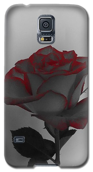 Hints Of Red- Single Rose Galaxy S5 Case
