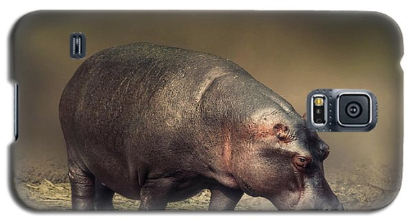 Galaxy S5 Case featuring the photograph Hippo by Charuhas Images