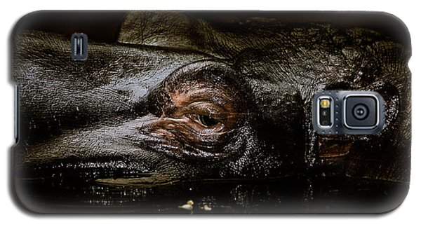Galaxy S5 Case featuring the photograph Hippo by Joerg Lingnau