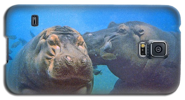 Hippos In Love Galaxy S5 Case