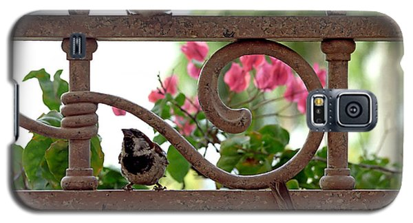 His Eye Is On The Sparrow Galaxy S5 Case by Marie Hicks