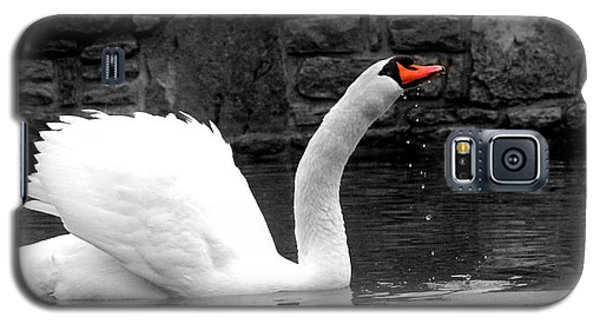 His Majesty On Ice Galaxy S5 Case
