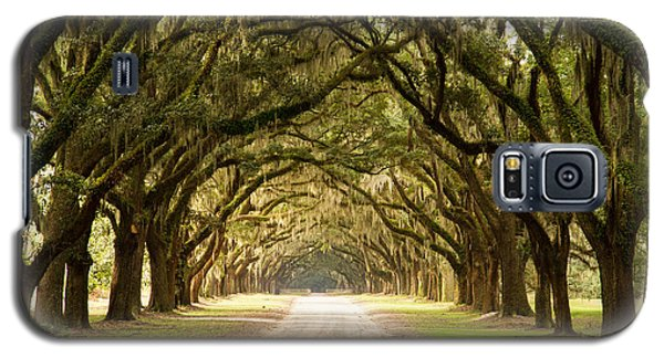 Historic Live Oak Trees Galaxy S5 Case