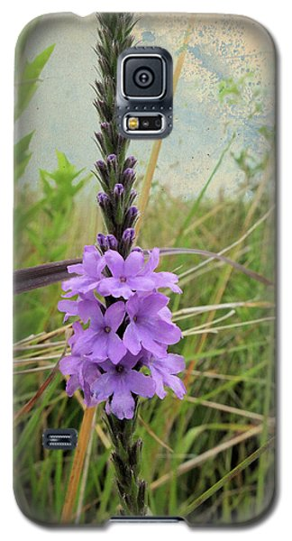 Galaxy S5 Case featuring the photograph Hoary Vervain by Scott Kingery