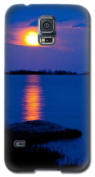 hog Island Galaxy S5 Case